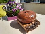 Korsika-Kalebassen Lampenschirm