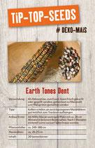 Saatgut Earth Tones Dent