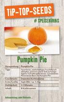 Saatgut Pumpkin Pie