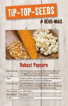 Saatgut Robust Popcorn