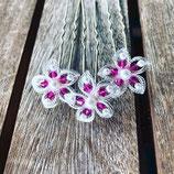Kleine Haarblüte