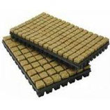 Grodan Steinwolle Stecklings Tray