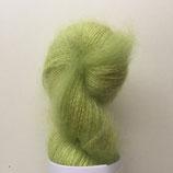 Halo Chlorophylle 180122