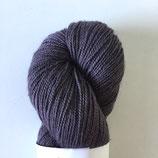 Twinkle NuttGalls 181009