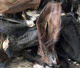 Rinderohren mit Fell und Muschel