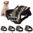 EC Dog Harness ABO60 - XL