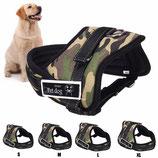 EC Dog Harness ABO58 - M