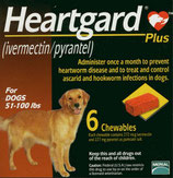 HeartGard Plus 23-45 KG