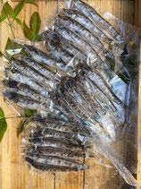 深海魚(メヒカリ)の丸干し  5本