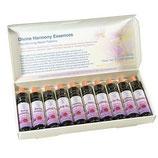 Integrierte Harmonie Essenzen 10 ml Set (10x10 ml) in Aufbewahrungskarton