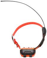 PROMO Collier supplémentaire pour CANICOM GPS Num'axes