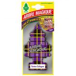 Arbre Magique Geurboom Tartan Cologne