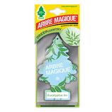 Arbre Magique Eucalyptus Air