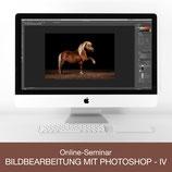Online-Seminar - Bildbearbeitung mit Photoshop - IV