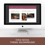 Online-Seminar - Thema: Bildwirkung