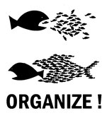 Organize, aufnäher