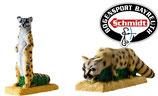 3D - Value Pack IBB Ginsterkatze SA