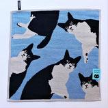 Set de table ou essuie main chats fond bleu