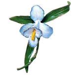 Fleur décorée en blanc - Bronze - 1554DB