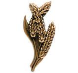 Epis - Bronze - Ref : 1958
