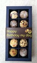 11.2 Hundegeburtstags Geschenk