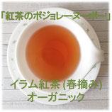 イラム紅茶(春摘み)ファーストフラッシュ ティーパック オーガニック