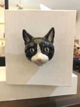 Bouton de porte chat noir et blanc