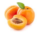 Aprikosenkernöl gepresst