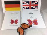 Bilingual: Lebenszyklus Schmetterling - BM 109D&E