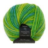 Nimbus Color Farbe: 40