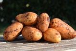 Kartoffeln (neue Ernte) (2kg)