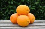 Orange (1 Stk.)
