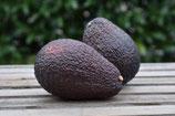 Avocado (1 Stk.)