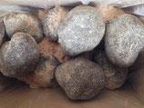 伊予の山の芋 3kg