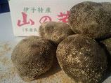 伊予の山の芋 特秀 4kg