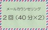 オンラインカウンセリング 40分×2回