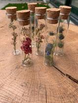 Glazen buis met droogbloemen klein
