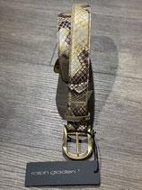 Ralph Gladen Python Gold-Silber
