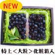【自然栽培】鏡野産ブルーベリー<特上・大粒400g>化粧箱入り