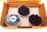【自然栽培】鏡野産ブルーベリー<300g>