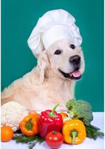 """Futterplan """"Kochen für den Hund"""""""