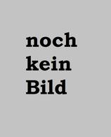 Stolte, Heinz: ›Het vuur der waarheid. De filosoof Constantin Brunner‹ Den Haag 1969, 55 S.