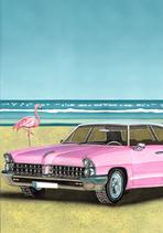 116_pontiac_flamingo