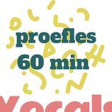 Proefzangles cadeau 60 min