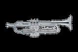J.Michael TR-300S