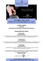 Calabria Wine Tour a Lamezia Terme