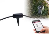 Paulmann Outdoor Plug & Shine ZB Controller I68 24V DC max 75W Schwarz Ks