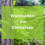 Waldbaden am Diemelsee