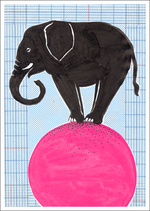SG_Circus - Elefant