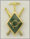 DISTINTIVO MONTAÑA ESQUI (rombo verde)